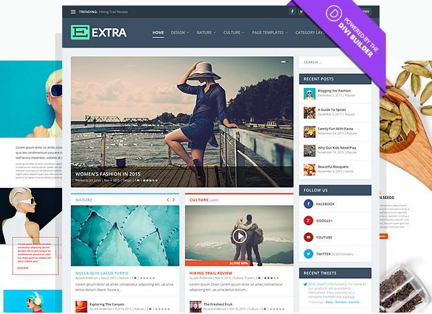 extra wordpress theme review 2016