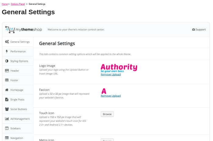 Authority theme settings